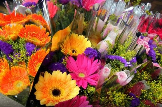 hong kong flower market 12
